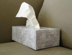 tissue-box-672786-m-300x230